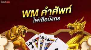 wm คำศัพท์ ไพ่เสือมังกร
